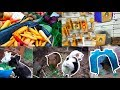 Shopping: Pet Supplies, Veggies & More!