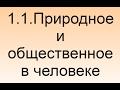 1.1. Природное и общественное в человеке