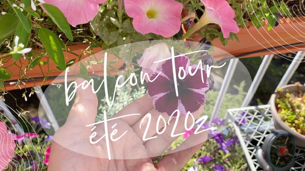 BALCON TOUR ÉTÉ 2020 : UPDATE POTAGER EN POT, PLANTES FLEURIES, ARBRES FRUITIERS | JARDINAGE URBAIN