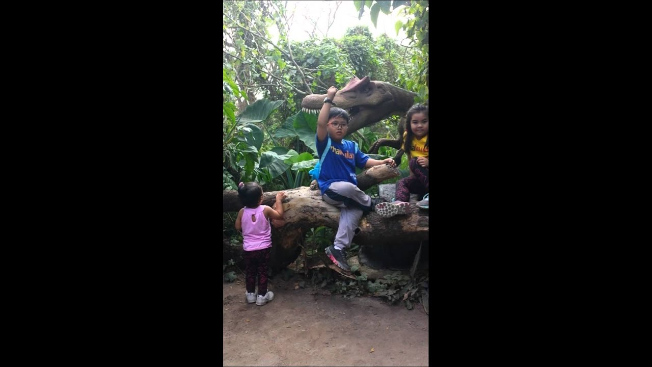 Download Dinosaur Island Park_KWCA 2015 fieldtrip