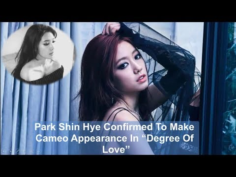"""Park Shin Hye Confirmed To Make Cameo Appearance In """"Degree Of Love"""""""