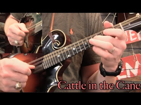 Tecumseh Valley Chords Gallery Chord Guitar Finger Position