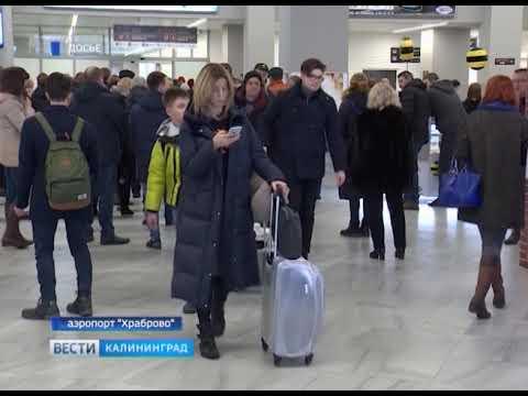 Из Калининграда открылись авиарейсы в Белгород, Липецк и Воронеж