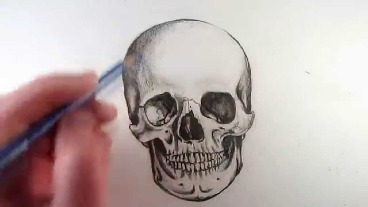 How to Draw a Realistic Skull: Narrated Step by Step - YouTube