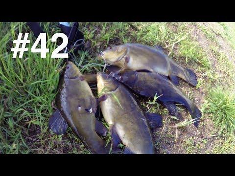 Рыболовная база «Фортуна»: подводная охота и рыбалка в