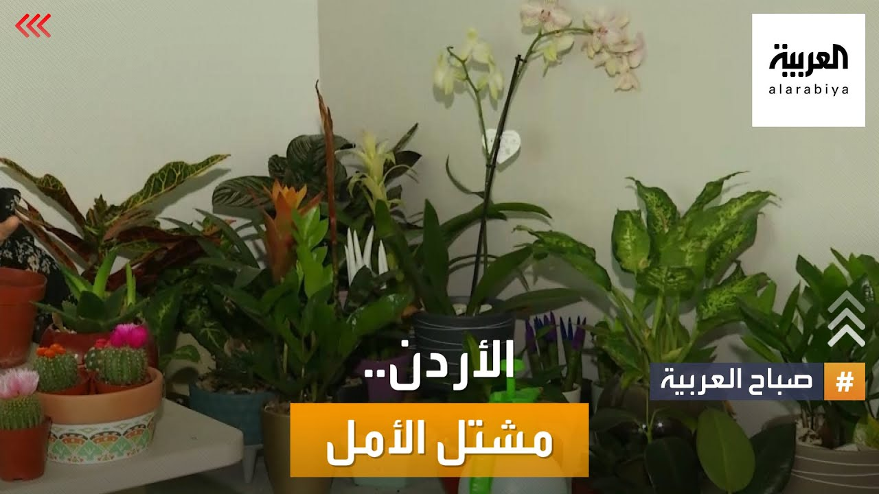 صباح العربية | مشتل لزراعة الأمل.. قصة من الأردن  - نشر قبل 4 ساعة
