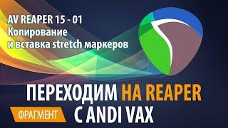 AV REAPER 15 - 01 Копирование и вставка stretch маркеров