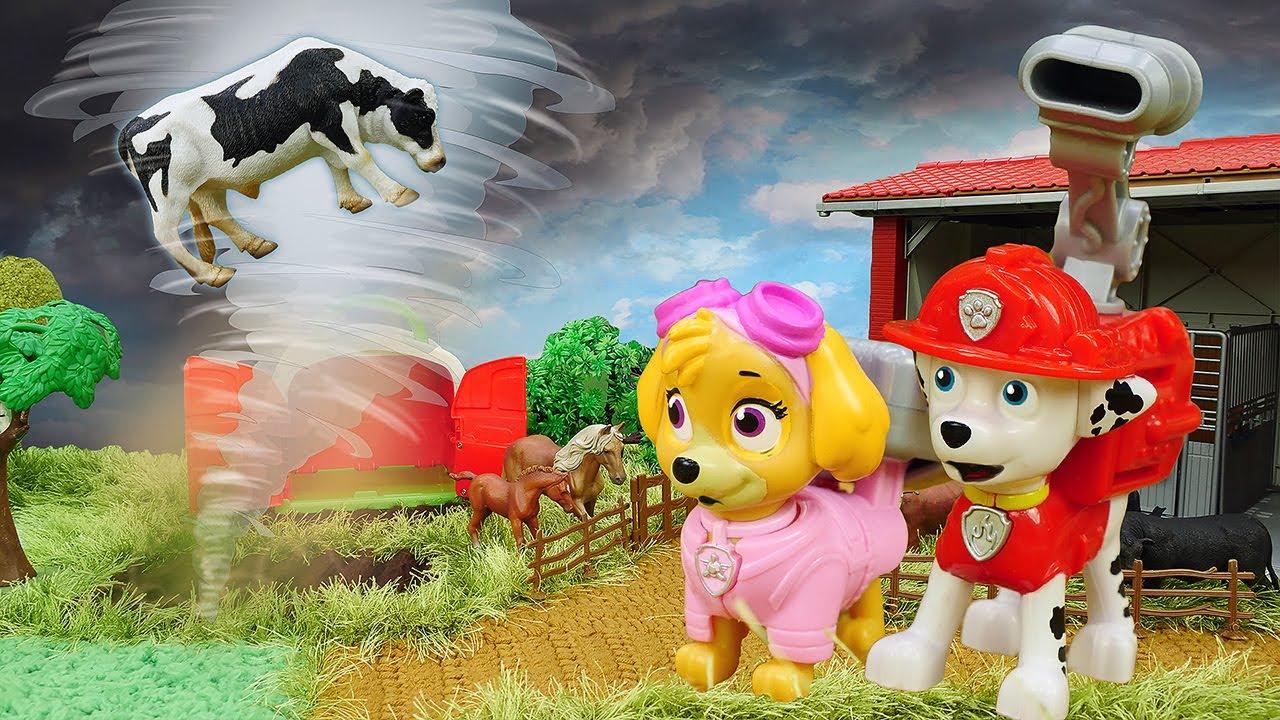 Tornado assusta os animais da fazenda! História infantil com super heróis Paw Patrol