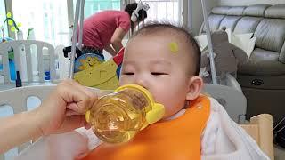 이강준 이유식먹방(닭고기대추밤찹쌀미음, 자두)