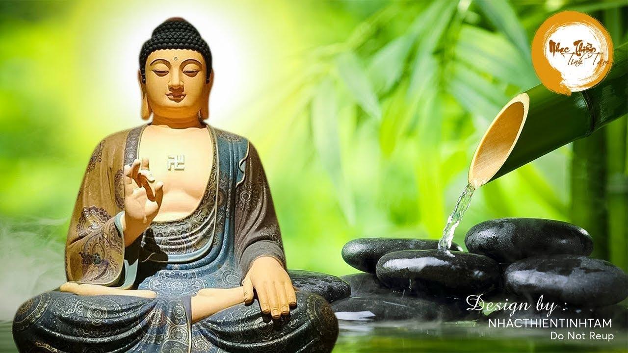 Nhạc Thiền Phật Giáo Thanh Lọc Thân Tâm – An Nhiên Tự Tại #New