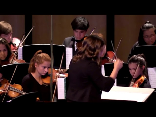 06 DHS Chamber Orchestra–Symphony No  1, Beethoven
