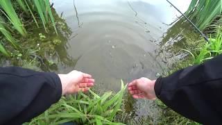Рыбалка на сома весной - на донку с червями.