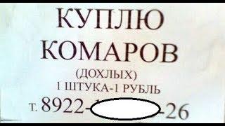 Лютые объявления. Куплю КОМАРОВ мертвых! Одна штука - рубль .
