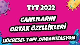 Hücresel Yapı, Organizasyon  TYT 2021 hedefekoş