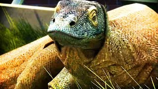 KOMODO DRAGONS & PLATYPUSES | Zoo Tycoon : Ultimate Animal Collection #20