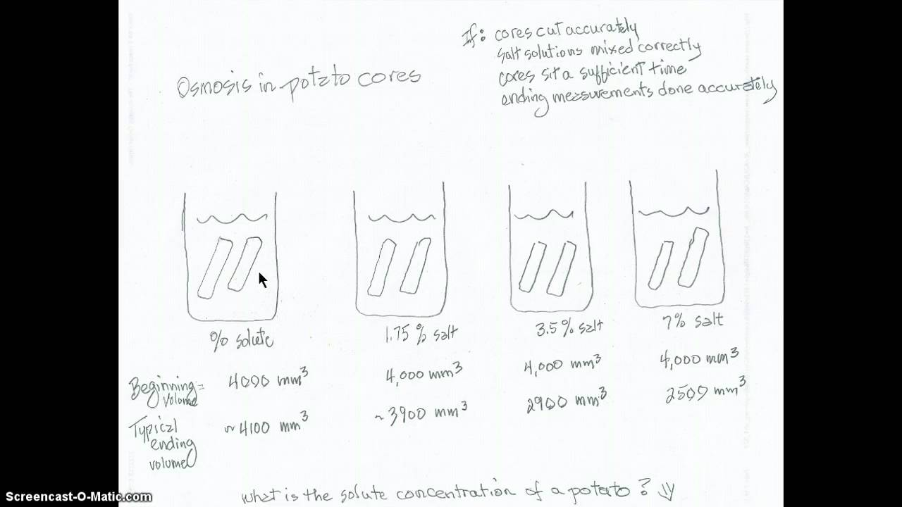 ️ Potato osmosis lab conclusion. Osmosis Experiment For