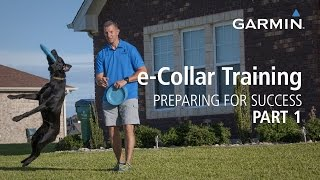 e-Collar Training: Preparing for Success with Garmin, Part 1