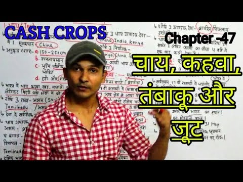 TEA, COFFEE, JUTE  AND TOBACCO | CASH CROPS | INDIAN GEOGRAPHY IN HINDI FOR ALL GOVT EXAM