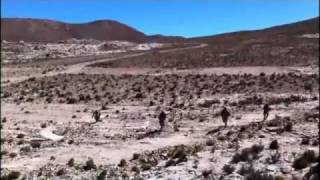 Ejercito de Chile - Soldados Altiplanicos