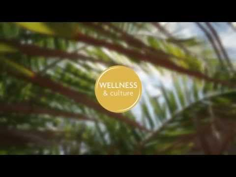 Wellness & Culture POP Ibiza