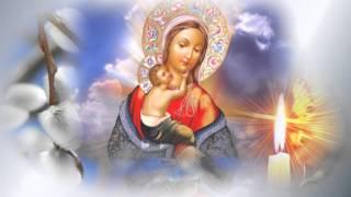 Вербное воскресенье - клип