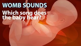 Womb Sounds - Which Song Does The Baby Hear After One Hour? - from JollyBabyClub