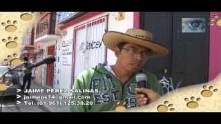 Musica andina por las calles de San Cristóbal