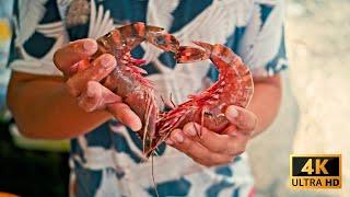 Пхукет сейчас Заброшенный остров и Рынок Раваи без туристов цены на морепродукты