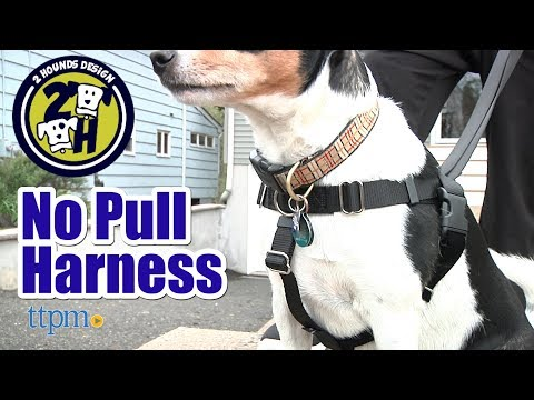 Freedom No Pull Harness from 2 Hounds Design