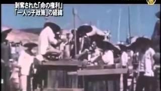 【歴史と今日】剥奪された「命の権利」