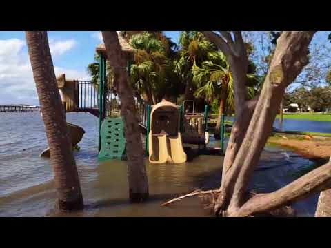 Survey the Damage after Hurricane Irma in Ormond beach