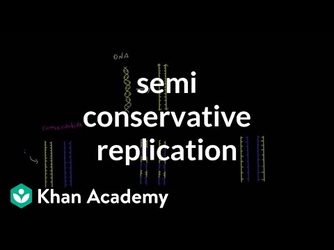 Semi conservative replication | Biomolecules | MCAT | Khan Academy