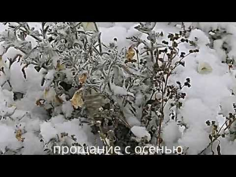Прощание с осенью.The first snow. weather in Kazakhstan.