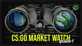 CS:GO INVESTMENT MARKET WATCH | Episode 1 | Analyzing the Market and Investments!
