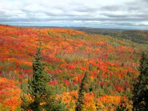 Minnesota North Woods Fall Color