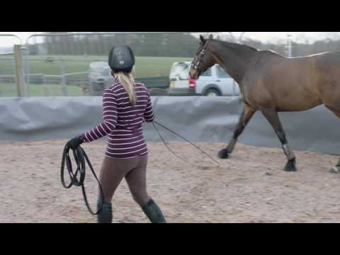 How To Lunge A Horse - Ride-away