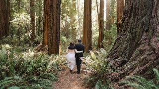 Redwood California Elopement