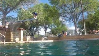 Little William diving from the high dive.