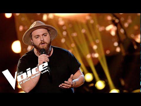 William Sheller (Un homme heureux) | Aurélien | The Voice France 2018 | Auditions Finales