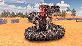 I am an anaconda snake...
