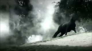 Mendrack - Les Chevaux Sauvages