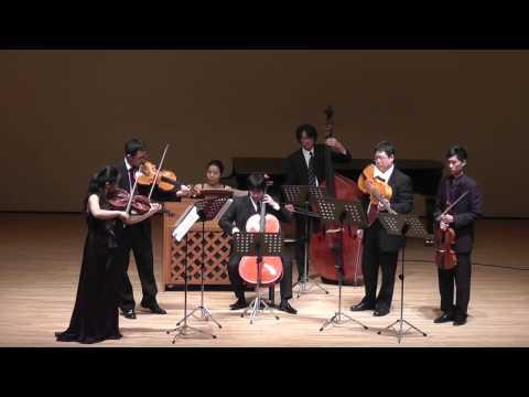 J.S.Bach : Brandenburg Concerto No. 6 In B-Flat Major, BWV1051