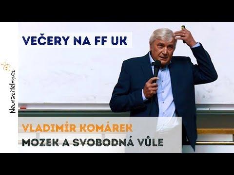 Mozek a svobodná vůle - Vladimír Komárek | Neurazitelny.cz | Večery na FF UK