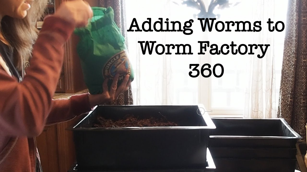 Adding Uncle Jim S Worms To Worm Factory 360