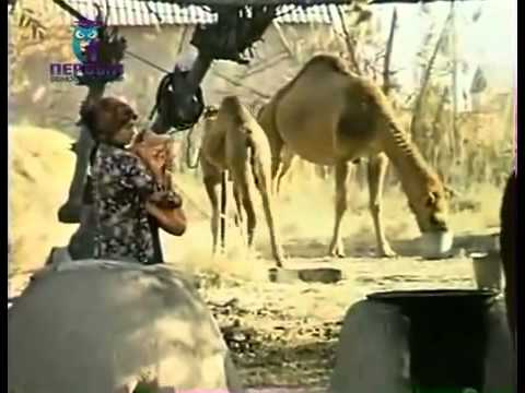 Film about Turkmenistan (2)