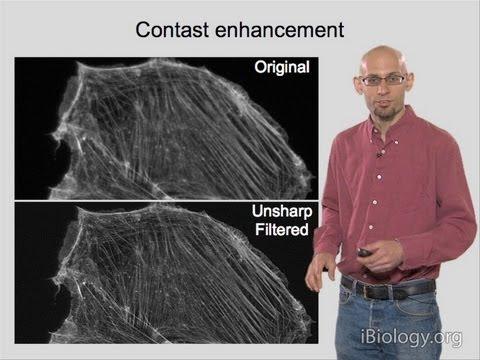 Microscopy: Image Analysis (Kurt Thorn)
