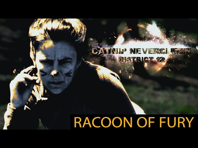 Cabin Games - Raccoon of Fury (Hunger Games parody)
