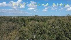 Pine Island Ridge