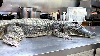 CROCODILE CUTTING 鱷魚料理 /FRIED CROCODILE/CROCODILE STEAK- Taiwanese Food