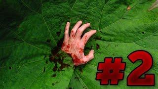 Die 5 Tödlichsten Pflanzen der Welt #2